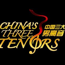 """三高文化艺术(北京)有限责任公司,成立于2013年7月,是""""中国三大男高音""""的品牌运营商。公司集文艺演出、演出经纪、影视制作、平面传媒、艺术品交易及展览展示为一体的综合性文化公司。"""