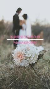 唯美简洁线条分割图片婚纱影楼相册