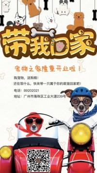 宠物店开业宣传/店铺宣传/宠物店促销 宠物店开业活动 猫猫狗狗