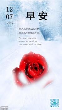 早安 文艺 朋友圈打卡 日签 玫瑰 雪