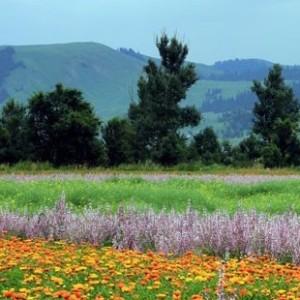 Красивые пейзажи Синьцзяна