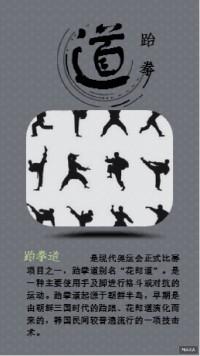 跆拳道文化传承宣传海报灰色调