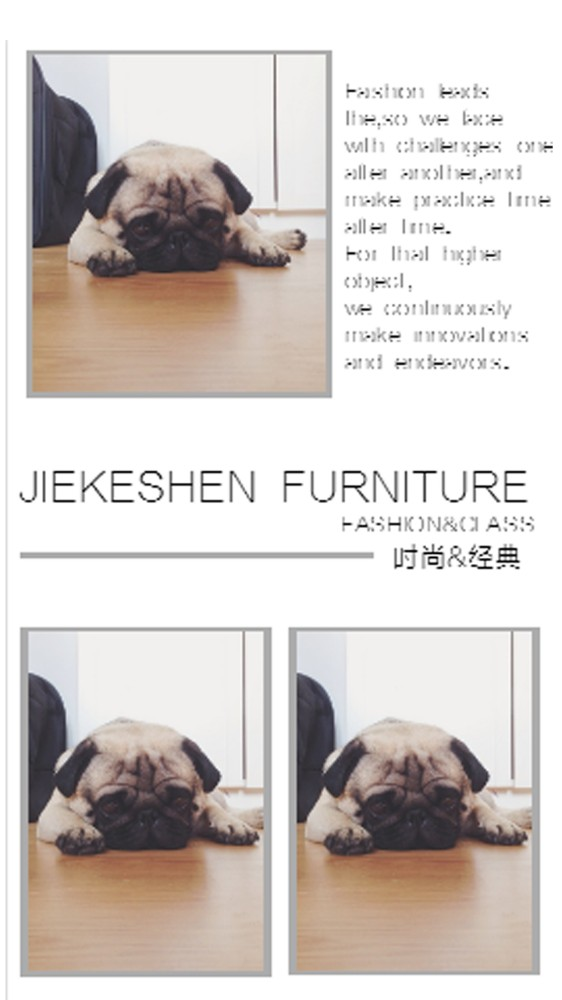 家具经典画册