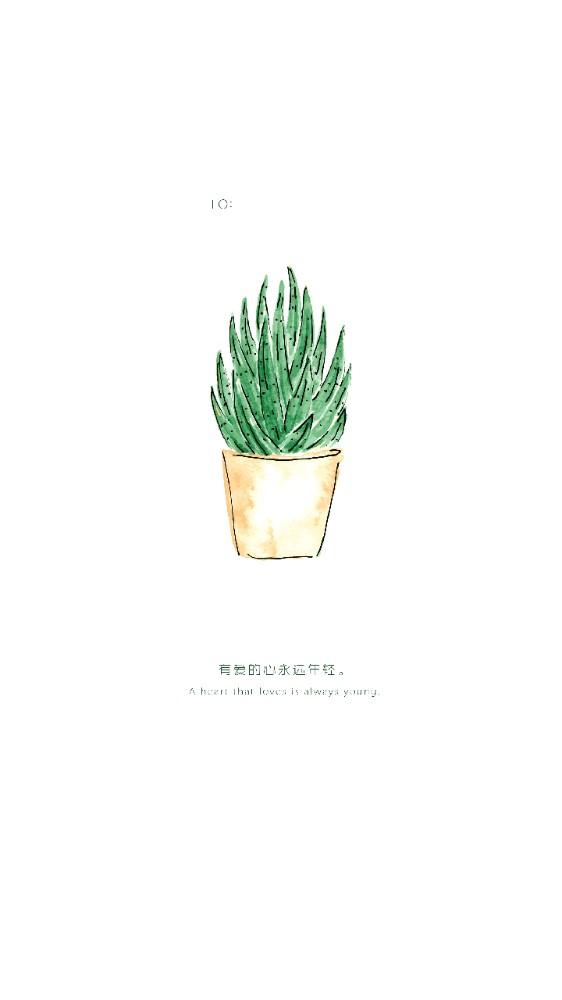清新文艺表白爱情友情祝福问候贺卡心情日签卡片