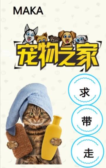 宠物店宣传 宠物店推广 萌宠 宠物 猫 狗